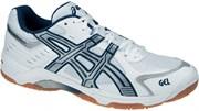Обувь волейбольная Asics CONTROL BN804-0152