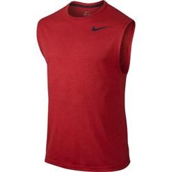 Футболка Nike Dri-FIT 742234-657 - фото 8194