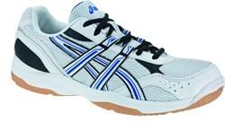 Обувь волейбольная Asics SEIGYO B004N-0142 - фото 9291