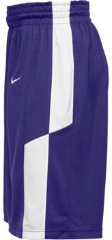 Шорты баскетбольные Nike ELITE FRANCHISE SHORT 802326-546 - фото 9671