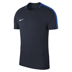 Футболка Nike Dry Academy18 Top SS 893693-451 - фото 9912