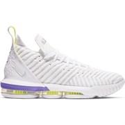 Обувь баскетбольная Nike Lebron XVI AO2588-102