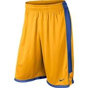 Шорты баскетбольные Nike TEAM POST UP SHORT 521136-739